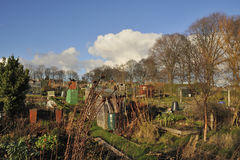 Allotments Stock Image