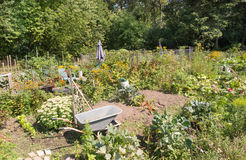 Allotments Stock Photography
