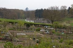 Allotments complex in Arnhem, Netherlands Royalty Free Stock Photo