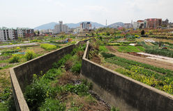 Allotments in Jinhae. Landscape photograph of allotment gardens in Jinhae, South Korea Stock Photography