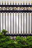 Alloys metal fence and Ornamental plants Stock Image