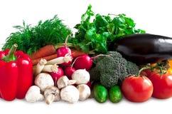 Allsorts di verdure Fotografia Stock