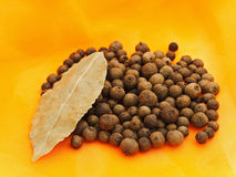 Allspice Royalty Free Stock Photo