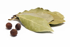 Allspice and bay leaf Royalty Free Stock Photography