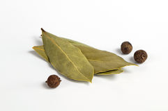 Allspice and bay leaf. A closeup of allspice berries and bay leaves stock images