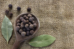 Allspice and bay leaves stock image
