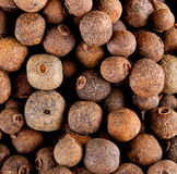 Allspice. Food Spice Background of allspice royalty free stock photography