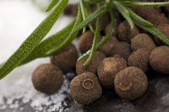 Allspice with fresh rosemary. And salt. macro stock image