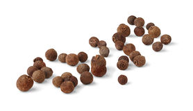 Allspice fruits Stock Images