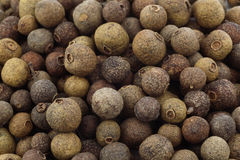 Allspice(Jamaica pepper) Stock Photos