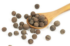 Allspice (Jamaica pepper) fruits on white Royalty Free Stock Images
