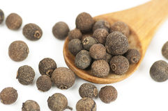 Allspice (Jamaica pepper) fruits on white Royalty Free Stock Image