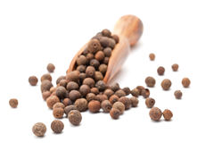 Allspice (Jamaican pepper, newspice) Stock Photography