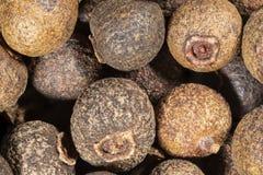 Allspice - macro photo of spice. Pimenta dioica stock photo