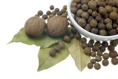 Allspice, nutmeg and bay leaves.  stock photo
