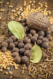 Allspice, nutmeg, mustard and bay leaf Royalty Free Stock Images