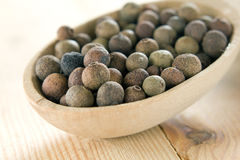 Allspice pepper (Jamaica pepper) Royalty Free Stock Images