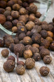Allspice (Pimenta dioica). Allspice, also called Jamaica pepper or pimento Royalty Free Stock Photos