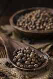 Allspice Royalty Free Stock Images