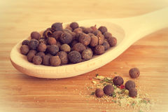 Allspice and sea salt with seasonings Stock Photo