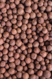 Allspice. Spices allspice for cooking meat, fish and salads stock image