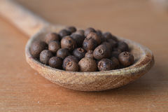 Allspice  in  spoon Stock Image