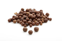 Allspice on white background. Allspice seeds on white background royalty free stock images