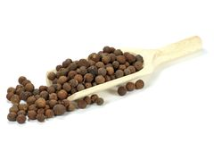 Allspice. Wooden scoop with allspice isolated on white background royalty free stock images