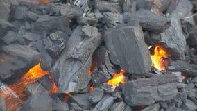 Allumage d'un feu de charbon banque de vidéos