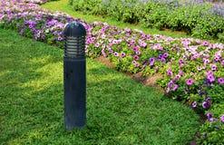 Allumage dans le jardin et les fleurs Photographie stock libre de droits