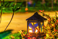 Allumage dans le jardin la nuit Image stock