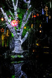 Allume l'arbre Images libres de droits