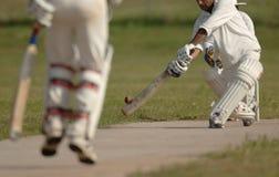 Allumette anglaise de cricket Photos stock