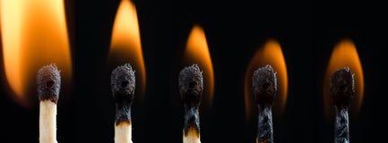 Allumette brûlante Photo libre de droits