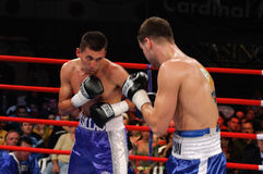 Allumette de boxe pour le titre intercontinental de WBC photographie stock