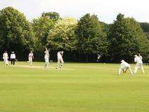 Allumette de cricket images libres de droits