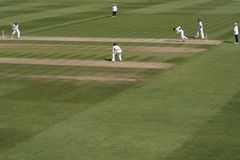 Allumette de cricket Images stock