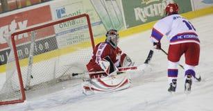 Allumette de hockey sur glace - but Photographie stock libre de droits