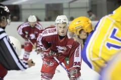Allumette de hockey sur glace image libre de droits