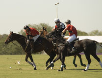 Allumette de polo Images stock