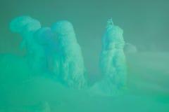 Allumez des monstres de neige à la montagne de Zao, Japon Photo stock