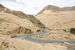 Alluna il paesaggio in Lamayuru a Leh, Ladakh, India Fotografia Stock