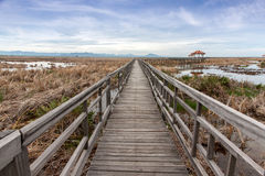 Allungamenti del ponte di legno attraverso i pascoli asciutti Fotografia Stock