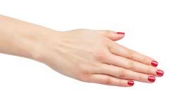 Allungamenti femminili della mano da dire ciao Fotografia Stock