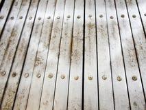 Allungamento d'acciaio della porta Fotografia Stock Libera da Diritti