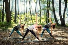 Allungamento degli esercizi in natura Fotografia Stock