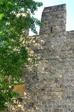 Allungamento delle pareti antiche con l'albero nella città di Monselice nella provincia di Padova nel Veneto (Italia) Fotografia Stock