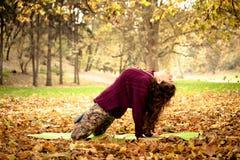 Allungamento di yoga di pratica della donna all'aperto Fotografia Stock