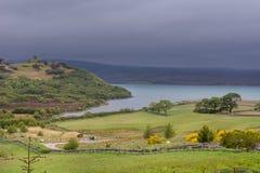 Allungamento verde intenso di litorale alla baia della lingua, Scotla nordico Fotografie Stock