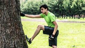 Allungando con un albero Fotografia Stock Libera da Diritti